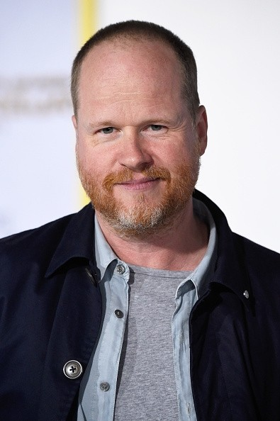 """The Avengers: Age of Ultron"" director Joss Whedon"