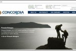 Screencap of Concordia website