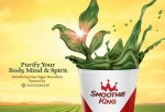 Smoothie King Vegan Smoothie